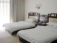 西藏天树花园酒店酒店房间