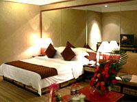 西藏唐卡酒店酒店大床间